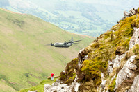 Herc at Bwlch with spectator